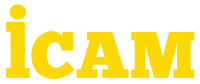 ICAM-VN